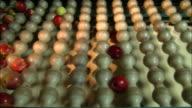 Medium Close Up static - Apples drop through a sizing device onto a conveyor /  Missouri, United States