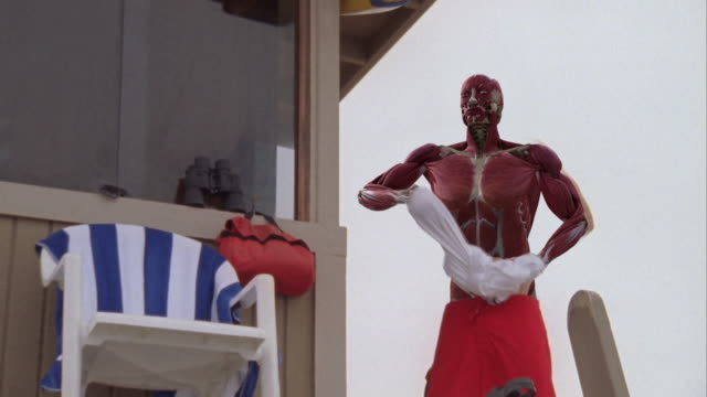 Medium Long Shot hand-held - A 3D animation depicts the actions of human muscles as a lifeguard prepares for a rescue