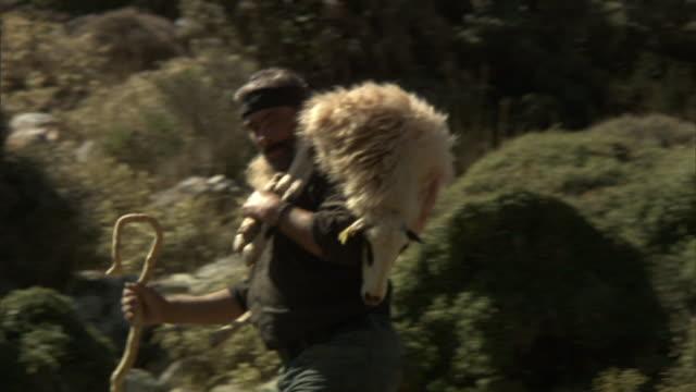 Medium pan-left tilt-down - A shepherd with a crook carries a sheep on his shoulders across a rocky hillside in Greece. / Greece