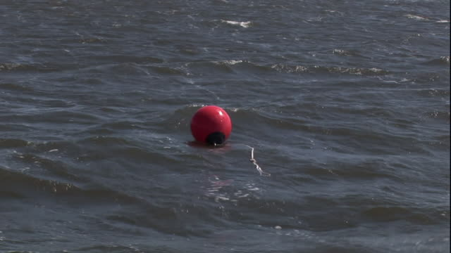 Medium pan-right zoom-out - A buoy floats in the water near a bridge. / USA