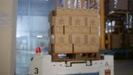 Medium shot boxes being moved on robotic pallets in warehouse at milk factory