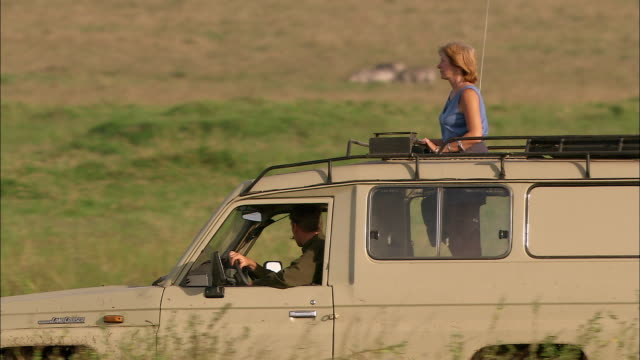 Medium shot couple on safari in 4x4 riding past elephants / man joining woman in sunroof / Masai Mara, Kenya
