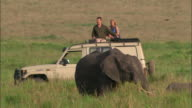 Medium shot couple on safari sitting on top of 4x4 / man watching elephant with binoculars / Masai Mara, Kenya
