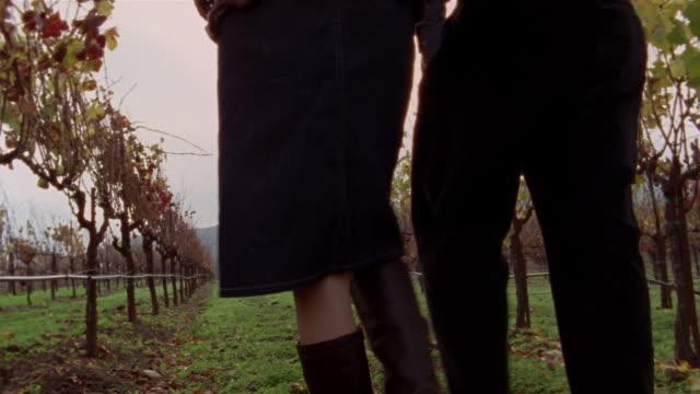 Medium shot couple walking in vineyard, drinking wine and holding hands/ Napa Valley, California