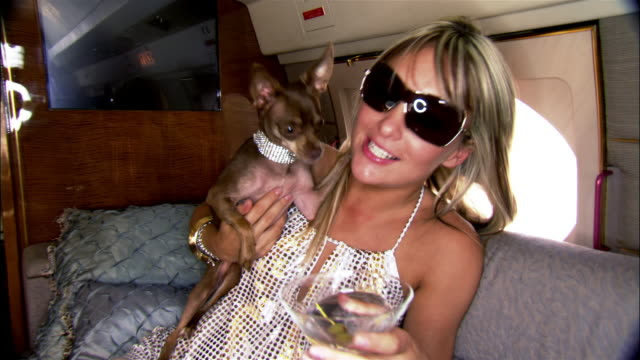Medium shot Diva holding chihuahua and drinking martini on private airplane