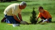 Medium shot dolly shot Hispanic man and boy planting bush outdoors / New Mexico