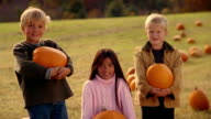 Medium shot girl and two boys holding pumpkins + looking at CAM