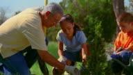 Medium shot Hispanic man planting bush with girl and boy outdoors / New Mexico