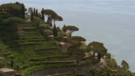 Medium shot houses and trees on side of hill with terraced garden in Amalfi / Amalfi Coast, Campania, Italy