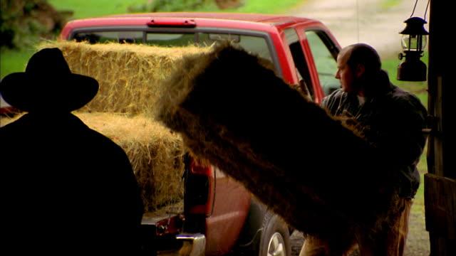 Medium shot man putting hay in pickup truck /  man wearing hat walking over and helping