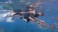 Medium shot mature couple snorkeling alongside school of fish