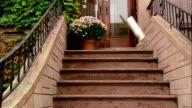 Medium shot newspaper landing on brownstone stoop/ Brooklyn, New York