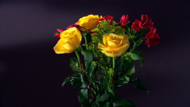 Medium shot of a bouquet of colorful flowers rotating against a black background.