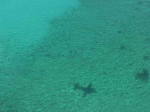 Medium shot shadow of sea plane flying low over tropical coloured water with coral reefs visible.