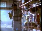 Medium shot tracking shot hardware store clerk removing product from shelf / descending ladder / talking to customer