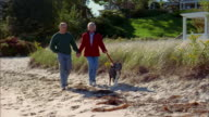 Medium shot tracking shot mature couple holding hands and walking w/dog on windy beach