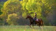 Medium shot tracking shot woman riding on horseback slowly in grassy field