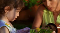Medium shot woman and young girl planting flowers outdoors