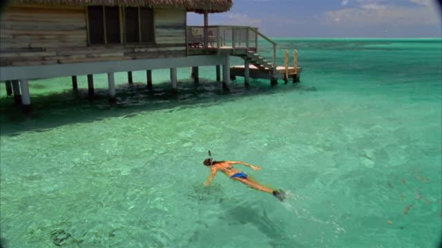 Medium shot woman snorkeling / swimming through small school of fish / zoom out hut in water / Bora Bora