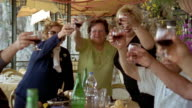 Medium shot zoom out people raising glasses of red wine and toasting at celebration / Praiano, Amalfi Coast, Italy