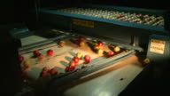 Medium static - Apples fall from a sizing device onto a conveyor /  Missouri, United States