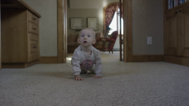 Medium tracking shot of baby girl crawling / Cedar Hills, Utah, United States