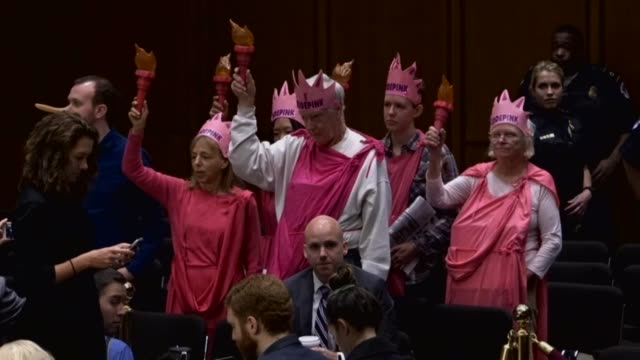 Members of the political activist group Code Pink stand dressed the Statue of Liberty at a Senate committee room before an oversight hearing with...