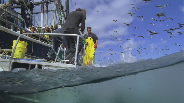 MS ZI SLO MO Men in boat catching fish / Moorea, Tahiti, French Polynesia
