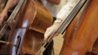 Men playing on cello