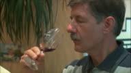CU Men tasting wine / Provence, France