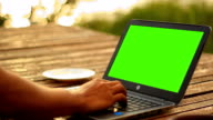 Men Using notebook green screen outdoor