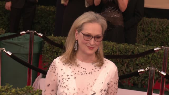 Meryl Streep at 23rd Annual Screen Actors Guild Awards Arrivals in Los Angeles CA