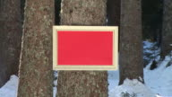 HD: Message Board im Wald