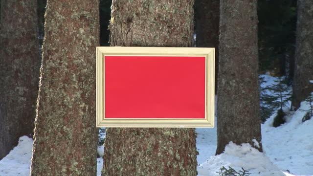 HD: Message Board im Wald