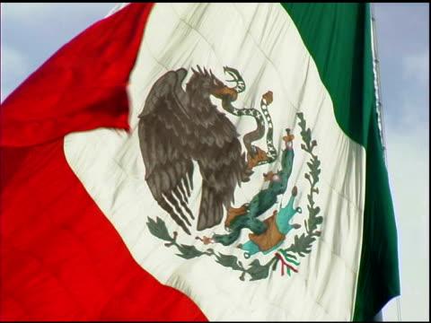 Mexican Flag Waving