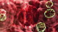 CGI ECU Microscopic view of virus cells attacking cell