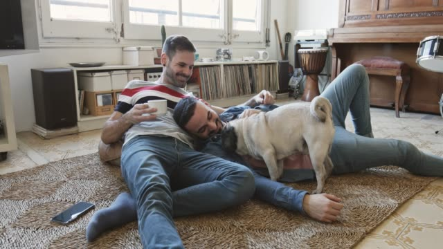 Mid adult gay couple playing with their pug lying down on rug at home
