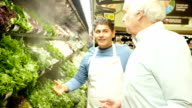 Mid-adult Hispanic supermarket employee explains different types of lettuce to senior Caucasian male