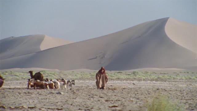 WS, Middle East, Two shepherds herding flock of goats in desert