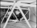 Midgets doing construction work on airplanes / little people on way to work entering factory / great need for workers under four feet / two men...
