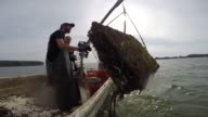 MiFarm Oysters Inc employees Graham Harlan and Caitlin Conner pull in an oyster cage into an aquaculture boat during a harvest in Fleets Bay off the...