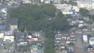AERIAL Miho Pine Grove, The World Heritage Site, In Shizuoka