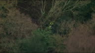Aerials of police search SCOTLAND Fife Kirkaldy of police officers searching woodland behind bungalow / line of police officers along in woods /...