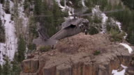 AERIAL, Military helicopter landing on rocky mountain top, USA