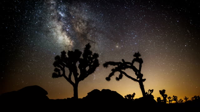 TIME LAPSE: Milky Way and Joshua Trees