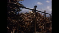 MONTAGE Mill factory processing sugar cane in Mauritius