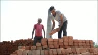 Millions of Indian brick workers are trapped in bonded labour and regularly cheated out of their wages an anti slavery group says as it demands...