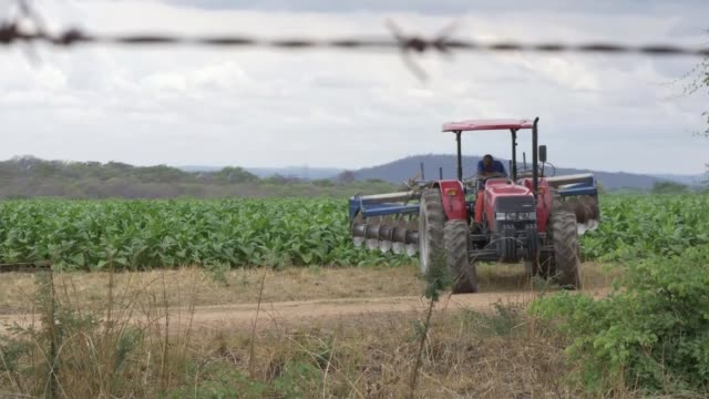 Robert Mugabe appears in public as negotiations continue ZIMBABWE EXT Tractor along through arable farming field in rural area Tractor with large...