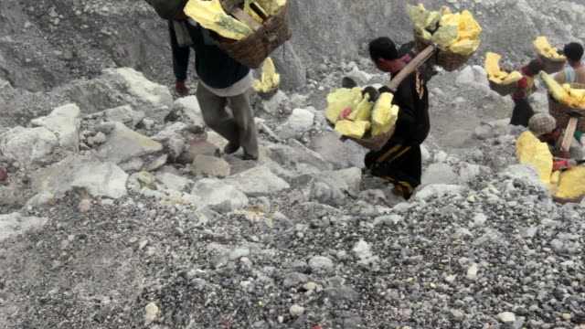 MS Miners climbing the Ijen volcano crater carrying solid sulfur / Ijen, Java, Indonesia