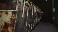 1973 PAN Miners riding underground transport vehicle / United Kingdom